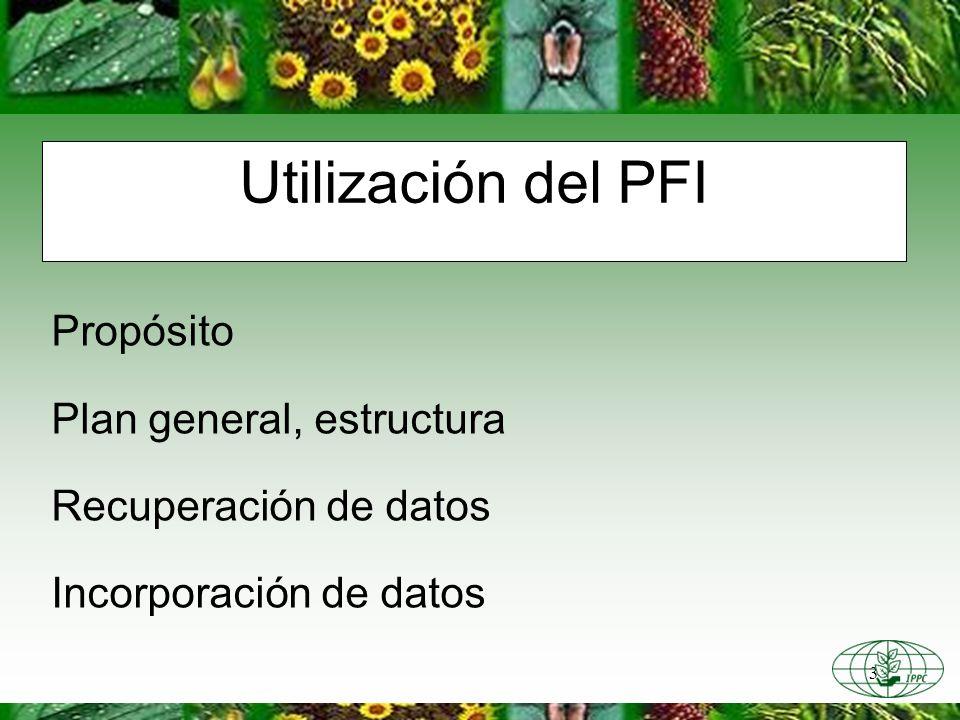 3 Utilización del PFI Propósito Plan general, estructura Recuperación de datos Incorporación de datos