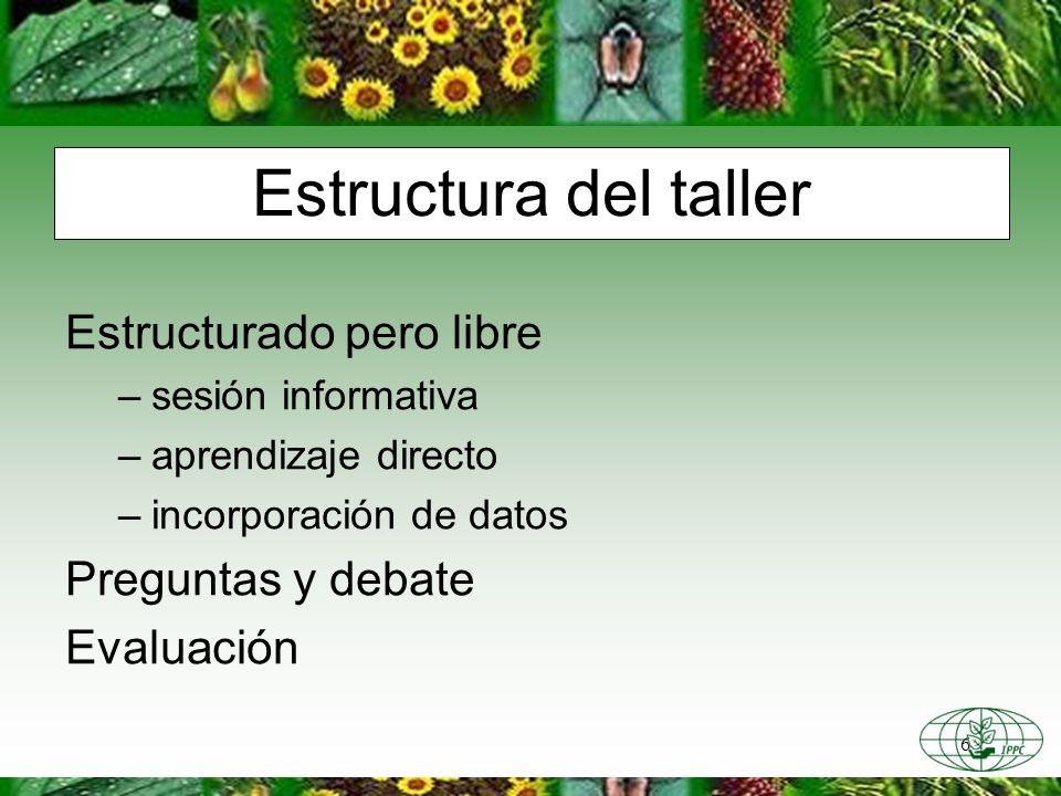 6 Estructura del taller Estructurado pero libre –sesión informativa –aprendizaje directo –incorporación de datos Preguntas y debate Evaluación
