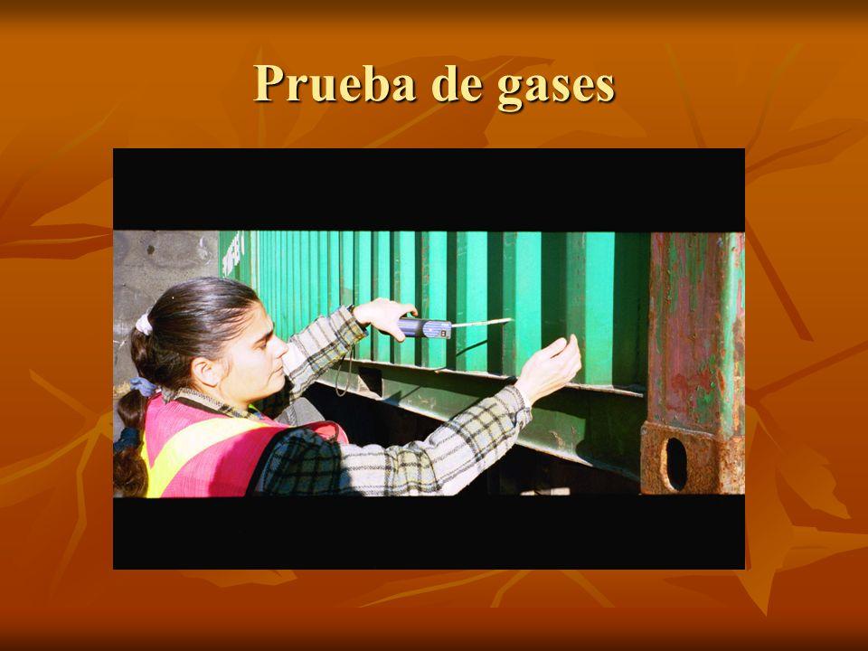 Prueba de gases
