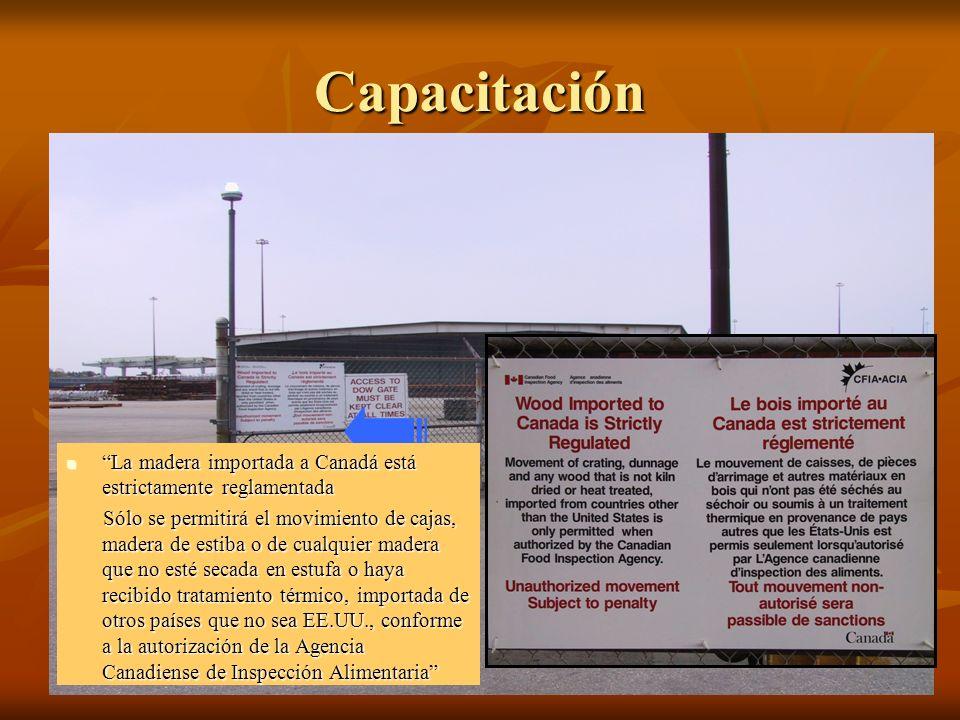 Capacitación La madera importada a Canadá está estrictamente reglamentada La madera importada a Canadá está estrictamente reglamentada Sólo se permitirá el movimiento de cajas, madera de estiba o de cualquier madera que no esté secada en estufa o haya recibido tratamiento térmico, importada de otros países que no sea EE.UU., conforme a la autorización de la Agencia Canadiense de Inspección Alimentaria Sólo se permitirá el movimiento de cajas, madera de estiba o de cualquier madera que no esté secada en estufa o haya recibido tratamiento térmico, importada de otros países que no sea EE.UU., conforme a la autorización de la Agencia Canadiense de Inspección Alimentaria