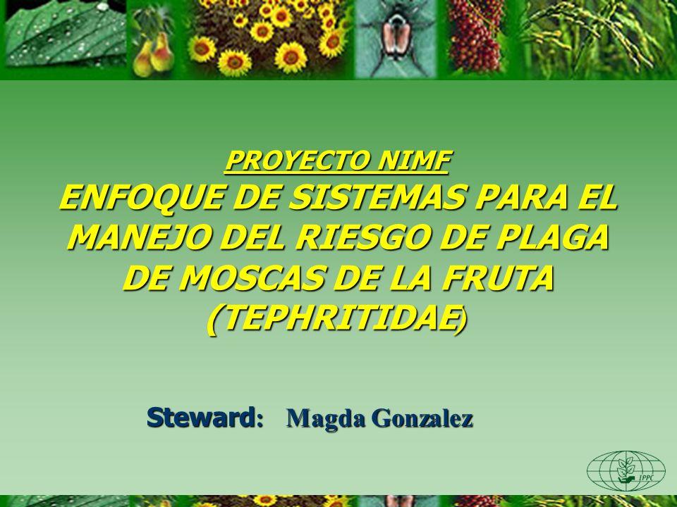 PROYECTO NIMF ENFOQUE DE SISTEMAS PARA EL MANEJO DEL RIESGO DE PLAGA DE MOSCAS DE LA FRUTA (TEPHRITIDAE ) Steward : Magda Gonzalez