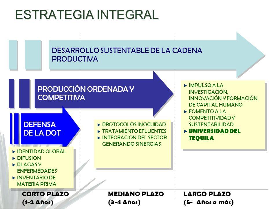 ESTRATEGIA INTEGRAL DESARROLLO SUSTENTABLE DE LA CADENA PRODUCTIVA PRODUCCIÓN ORDENADA Y COMPETITIVA DEFENSA DE LA DOT CORTO PLAZO (1-2 Años) MEDIANO