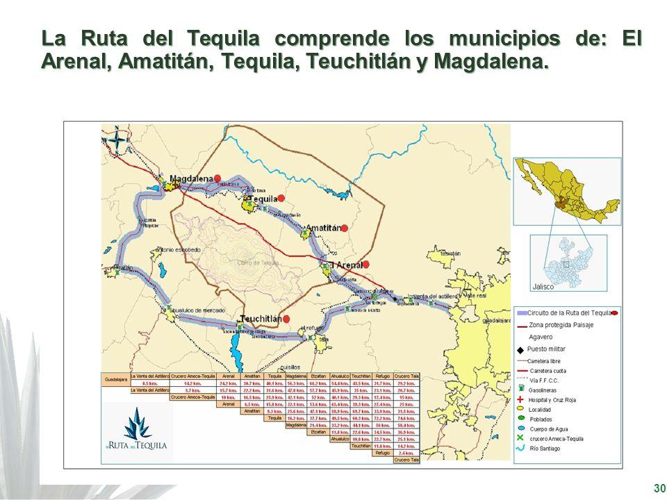30 La Ruta del Tequila comprende los municipios de: El Arenal, Amatitán, Tequila, Teuchitlán y Magdalena.