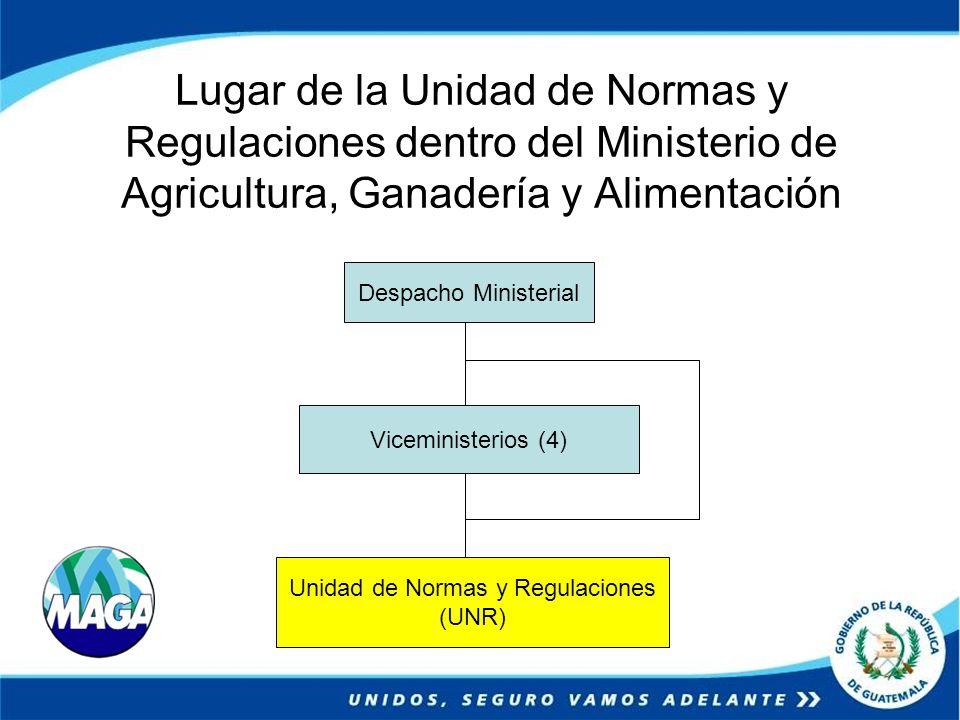 Lugar de la Unidad de Normas y Regulaciones dentro del Ministerio de Agricultura, Ganadería y Alimentación Despacho Ministerial Viceministerios (4) Un