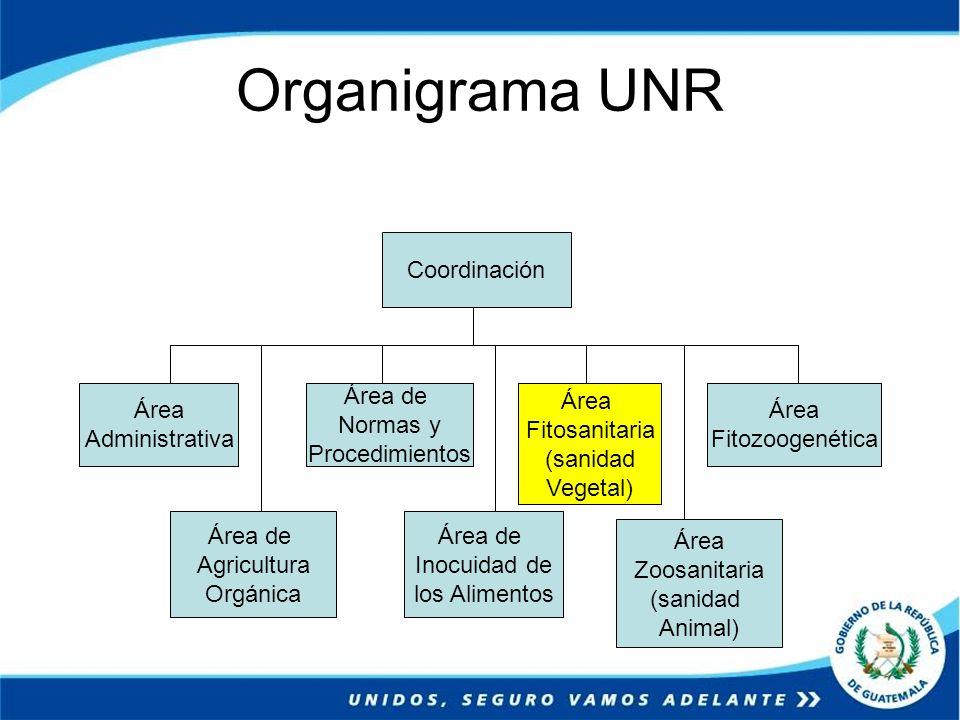 Organigrama UNR Coordinación Área Administrativa Área de Normas y Procedimientos Área Fitosanitaria (sanidad Vegetal) Área Fitozoogenética Área de Agr