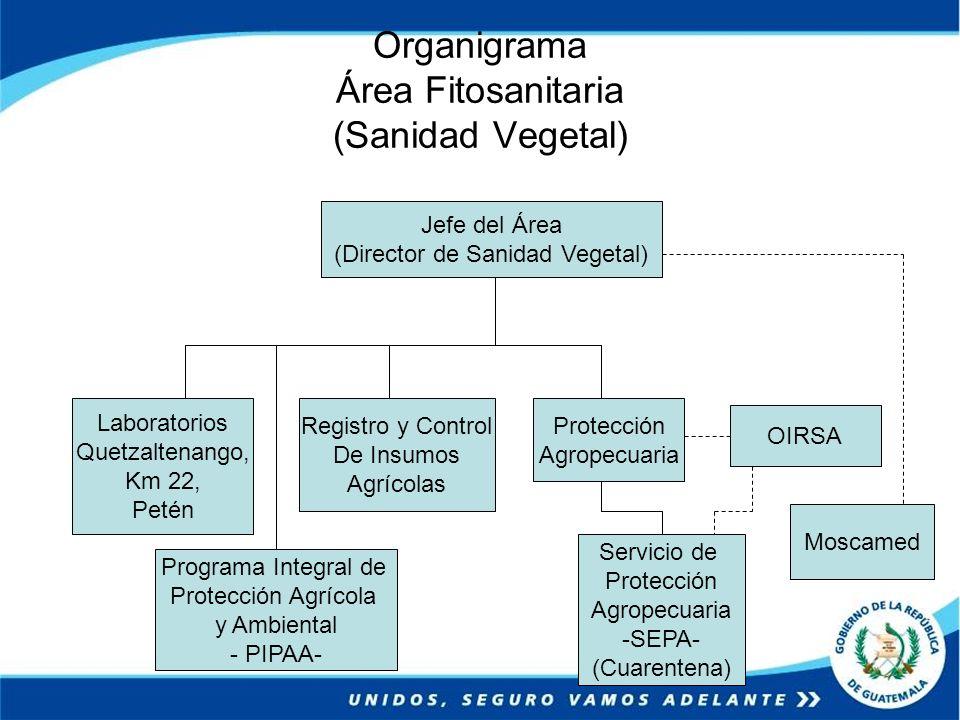 Organigrama Área Fitosanitaria (Sanidad Vegetal) Jefe del Área (Director de Sanidad Vegetal) Protección Agropecuaria Registro y Control De Insumos Agr