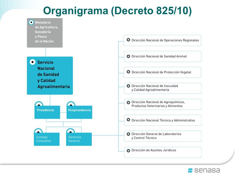 Organigrama (Decreto 825/10)