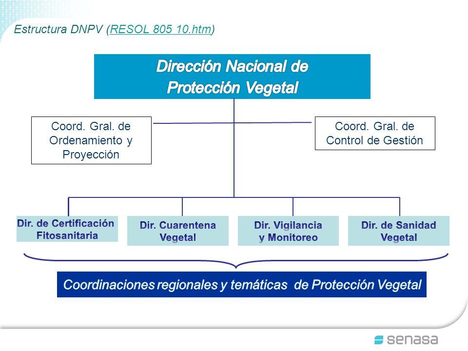 Estructura DNPV (RESOL 805 10.htm)RESOL 805 10.htm Coord. Gral. de Ordenamiento y Proyección Coord. Gral. de Control de Gestión