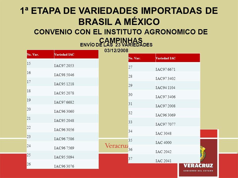 1ª ETAPA DE VARIEDADES IMPORTADAS DE BRASIL A MÉXICO No. Var.Variedad IAC 15 IAC97 2053 16 IAC98 5046 17 IAC95 1218 18 IAC95 2078 19 IAC97 6682 20 IAC