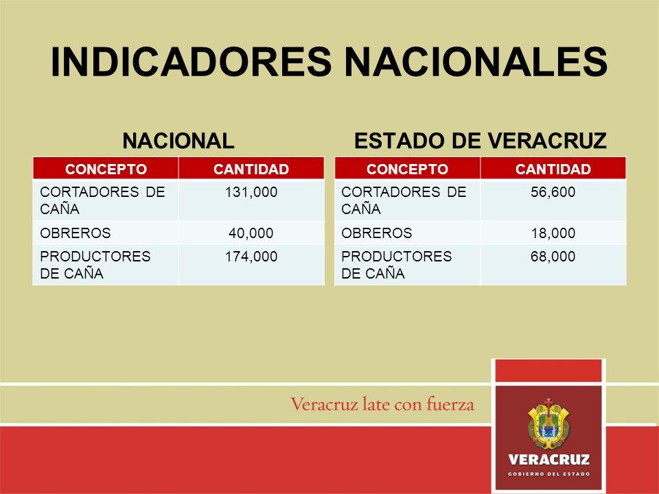 INDICADORES NACIONALES NACIONAL CONCEPTOCANTIDAD CORTADORES DE CAÑA 131,000 OBREROS40,000 PRODUCTORES DE CAÑA 174,000 ESTADO DE VERACRUZ CONCEPTOCANTI