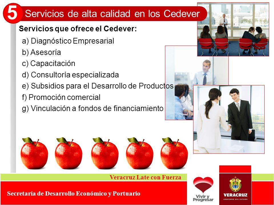 Servicios que ofrece el Cedever: Servicios de alta calidad en los Cedever 5 Veracruz Late con Fuerza Secretaría de Desarrollo Económico y Portuario a)