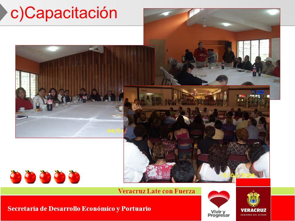 c)Capacitación Veracruz Late con Fuerza Secretaría de Desarrollo Económico y Portuario