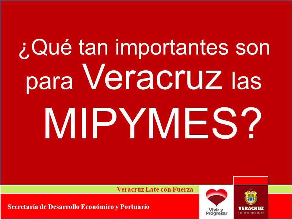 para Veracruz las ¿Qué tan importantes son MIPYMES? Veracruz Late con Fuerza Secretaría de Desarrollo Económico y Portuario
