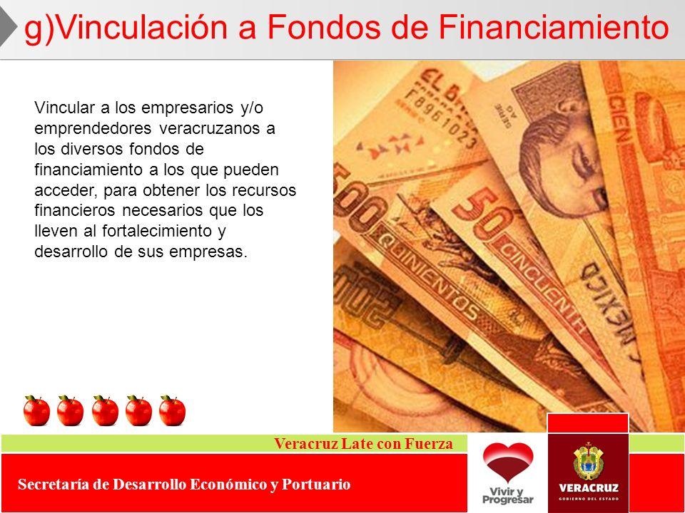 Veracruz Late con Fuerza Secretaría de Desarrollo Económico y Portuario g)Vinculación a Fondos de Financiamiento Vincular a los empresarios y/o empren