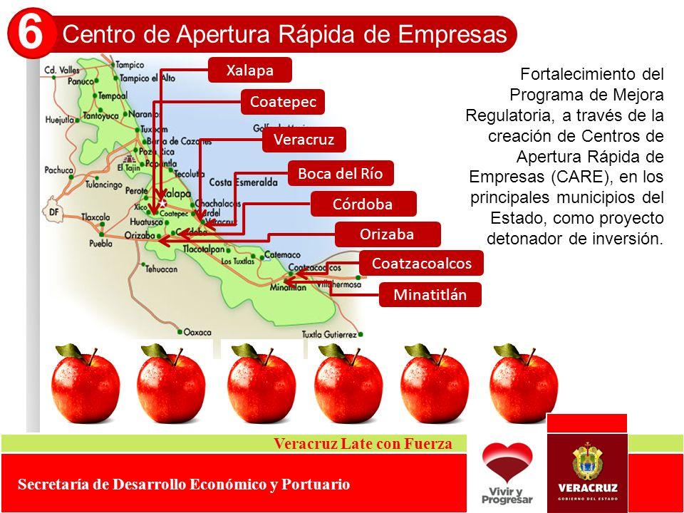 Centro de Apertura Rápida de Empresas 6 Veracruz Late con Fuerza Secretaría de Desarrollo Económico y Portuario Fortalecimiento del Programa de Mejora