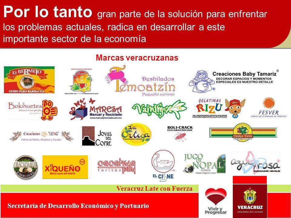 Veracruz Late con Fuerza Secretaría de Desarrollo Económico y Portuario Por lo tanto gran parte de la solución para enfrentar los problemas actuales,