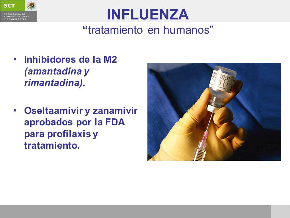 INFLUENZAtratamiento en humanos Inhibidores de la M2 (amantadina y rimantadina). Oseltaamivir y zanamivir aprobados por la FDA para profilaxis y trata