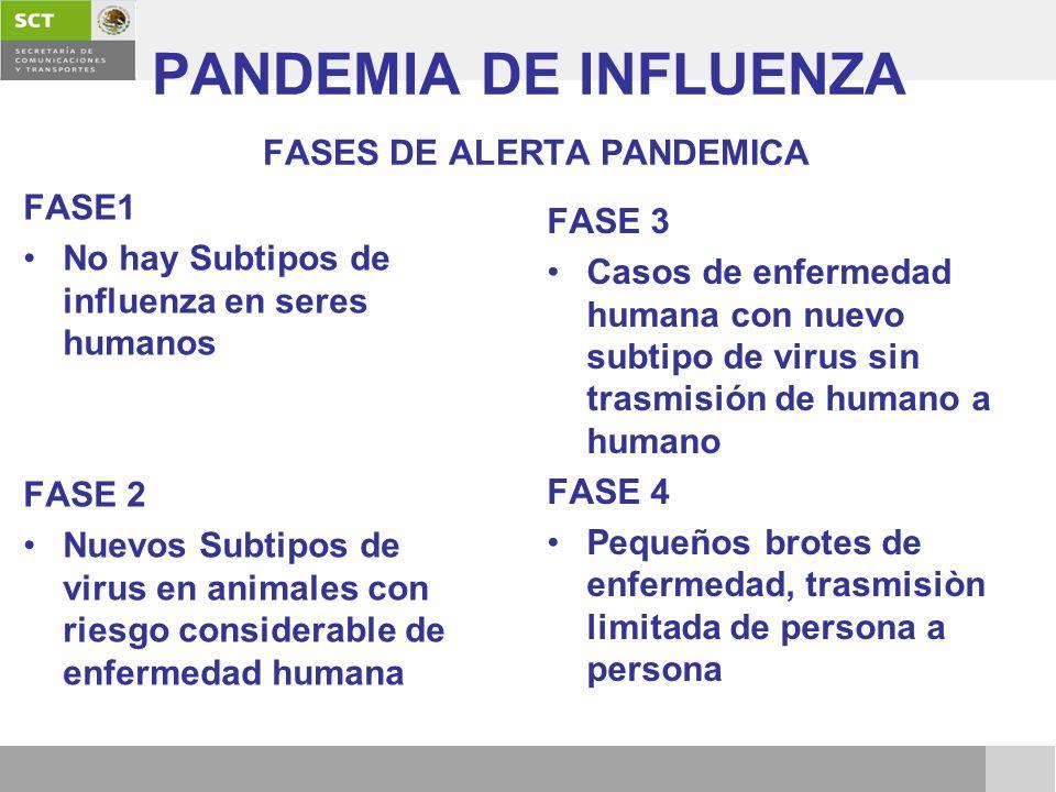 PANDEMIA DE INFLUENZA FASES DE ALERTA PANDEMICA FASE1 No hay Subtipos de influenza en seres humanos FASE 2 Nuevos Subtipos de virus en animales con ri