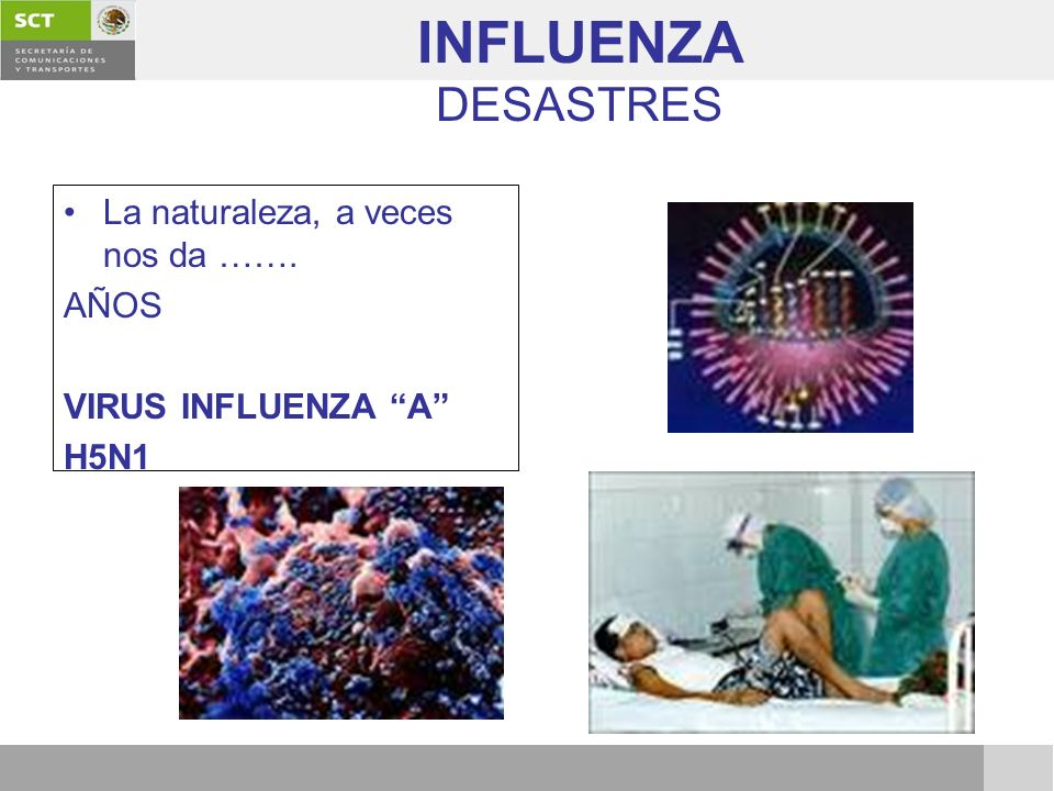 INFLUENZA DESASTRES La naturaleza, a veces nos da ……. AÑOS VIRUS INFLUENZA A H5N1