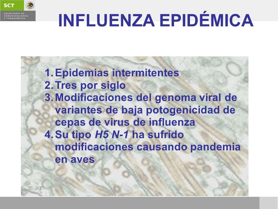 INFLUENZA EPIDÉMICA 1.Epidemias intermitentes 2.Tres por siglo 3.Modificaciones del genoma viral de variantes de baja potogenicidad de cepas de virus