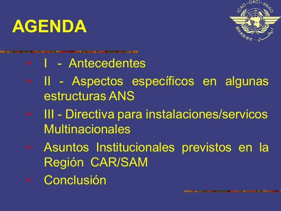 AGENDA I - Antecedentes II - Aspectos específicos en algunas estructuras ANS III - Directiva para instalaciones/servicos Multinacionales Asuntos Insti