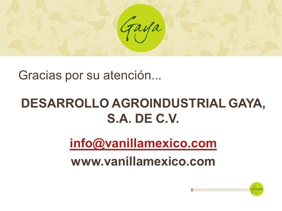 Gracias por su atención... DESARROLLO AGROINDUSTRIAL GAYA, S.A. DE C.V. info@vanillamexico.com www.vanillamexico.com
