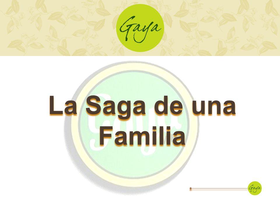 La empresa Desarrollo Agroindustrial Gaya, S.A.de C.V.