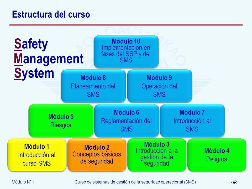 Módulo N° 1Curso de sistemas de gestión de la seguridad operacional (SMS) 12 Estructura del curso Módulo 1 Introducción al curso SMS Módulo 2 Concepto