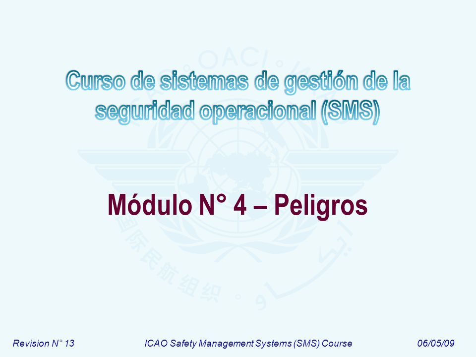 Revision N° 13ICAO Safety Management Systems (SMS) Course06/05/09 Módulo N° 4 – Peligros