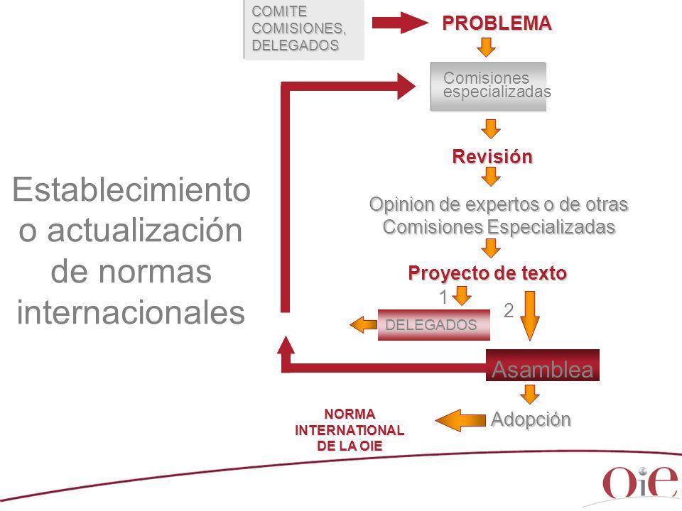 PROBLEMA Comisiones especializadas Revisión Opinion de expertos o de otras Comisiones Especializadas Proyecto de texto Asamblea DELEGADOS Adopción COM