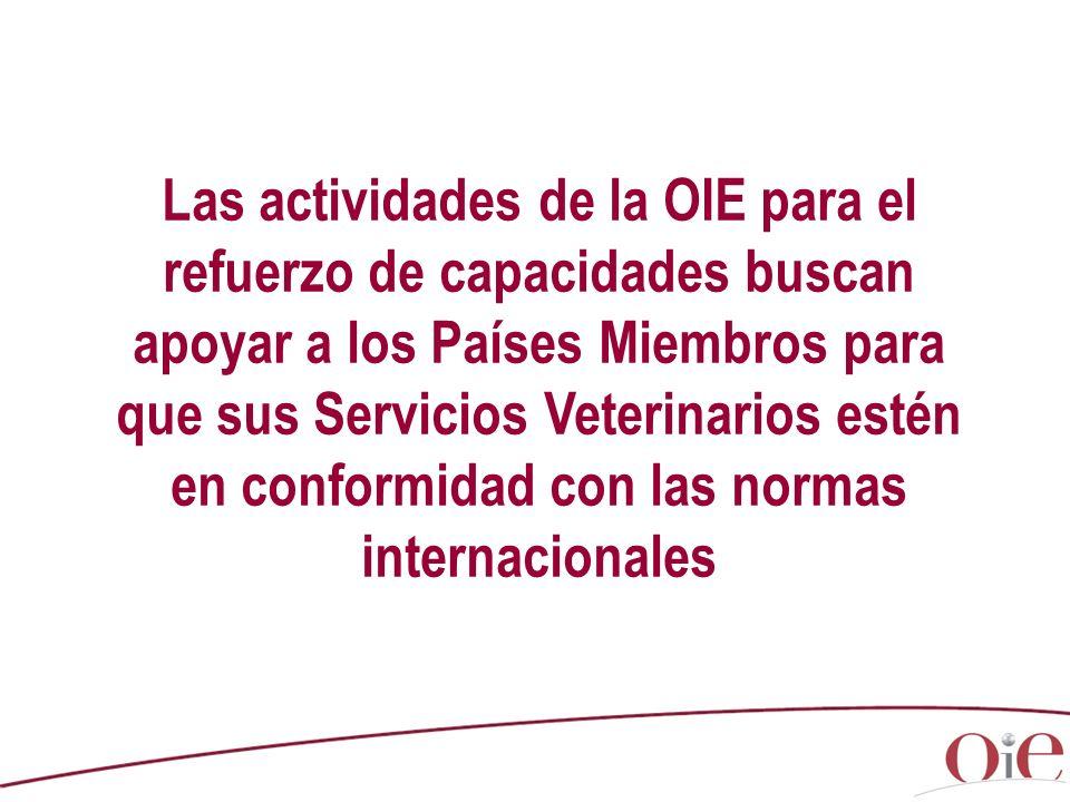 Las actividades de la OIE para el refuerzo de capacidades buscan apoyar a los Países Miembros para que sus Servicios Veterinarios estén en conformidad