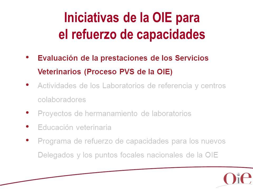 Iniciativas de la OIE para el refuerzo de capacidades Evaluación de la prestaciones de los Servicios Veterinarios (Proceso PVS de la OIE) Actividades