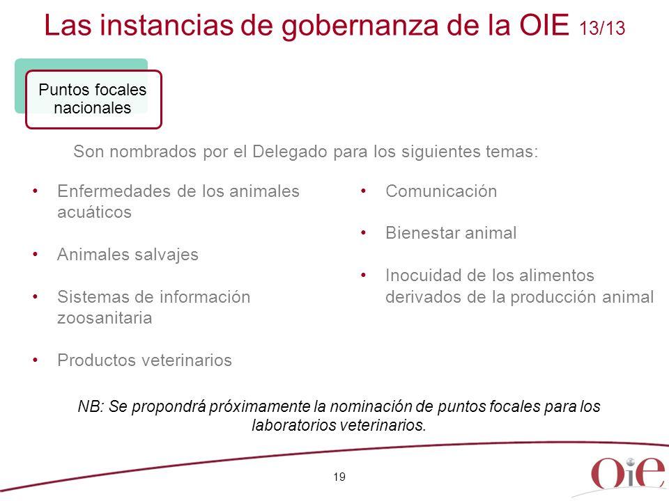 Las instancias de gobernanza de la OIE 13/13 19 Enfermedades de los animales acuáticos Animales salvajes Sistemas de información zoosanitaria Producto