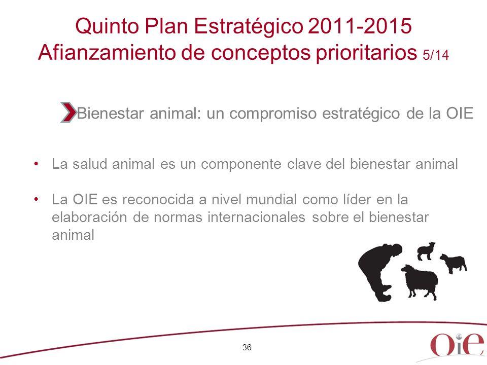 36 Quinto Plan Estratégico 2011-2015 Afianzamiento de conceptos prioritarios 5/14 La salud animal es un componente clave del bienestar animal La OIE e