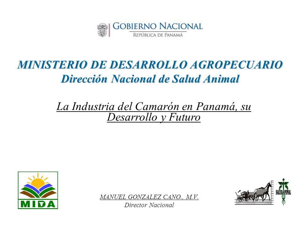 MINISTERIO DE DESARROLLO AGROPECUARIO Dirección Nacional de Salud Animal MANUEL GONZALEZ CANO., M.V. Director Nacional La Industria del Camarón en Pan