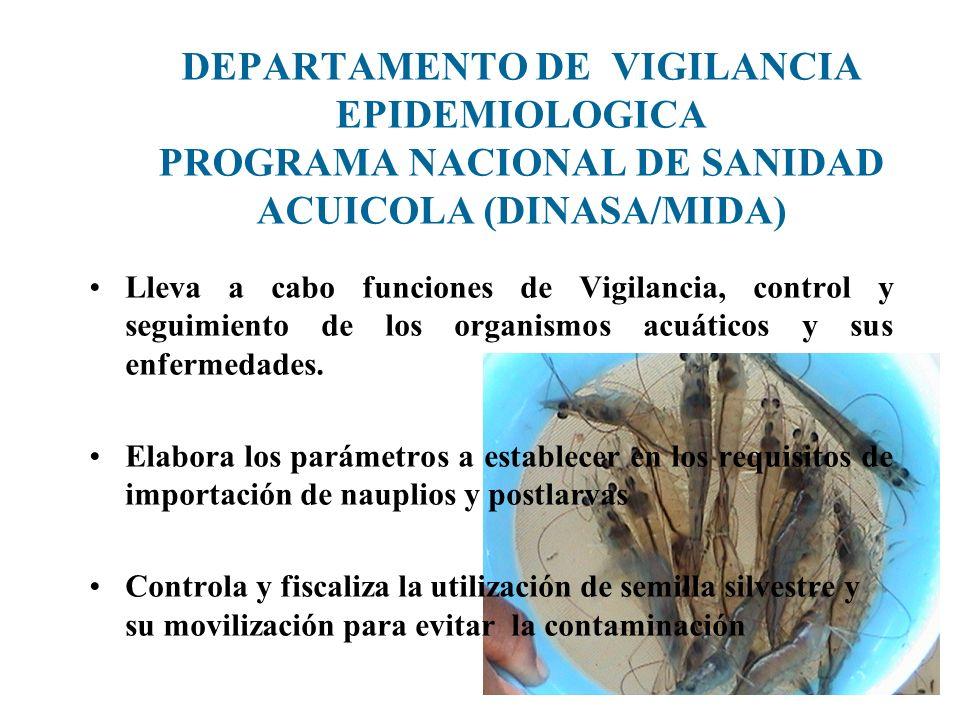 DEPARTAMENTO DE VIGILANCIA EPIDEMIOLOGICA PROGRAMA NACIONAL DE SANIDAD ACUICOLA (DINASA/MIDA) Lleva a cabo funciones de Vigilancia, control y seguimie