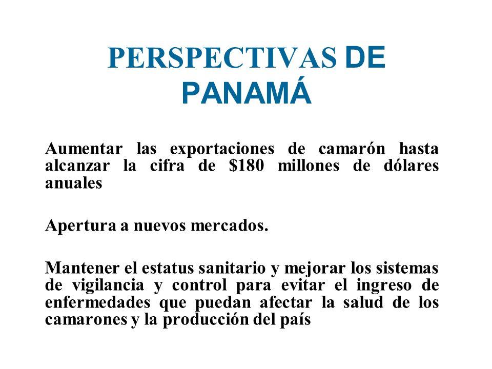 PERSPECTIVAS DE PANAMÁ Aumentar las exportaciones de camarón hasta alcanzar la cifra de $180 millones de dólares anuales Apertura a nuevos mercados. M
