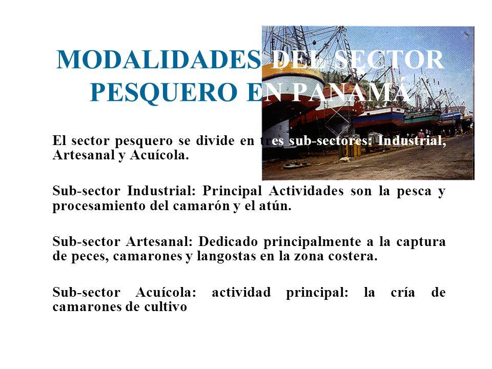 MODALIDADES DEL SECTOR PESQUERO EN PANAMÁ El sector pesquero se divide en tres sub-sectores: Industrial, Artesanal y Acuícola. Sub-sector Industrial: