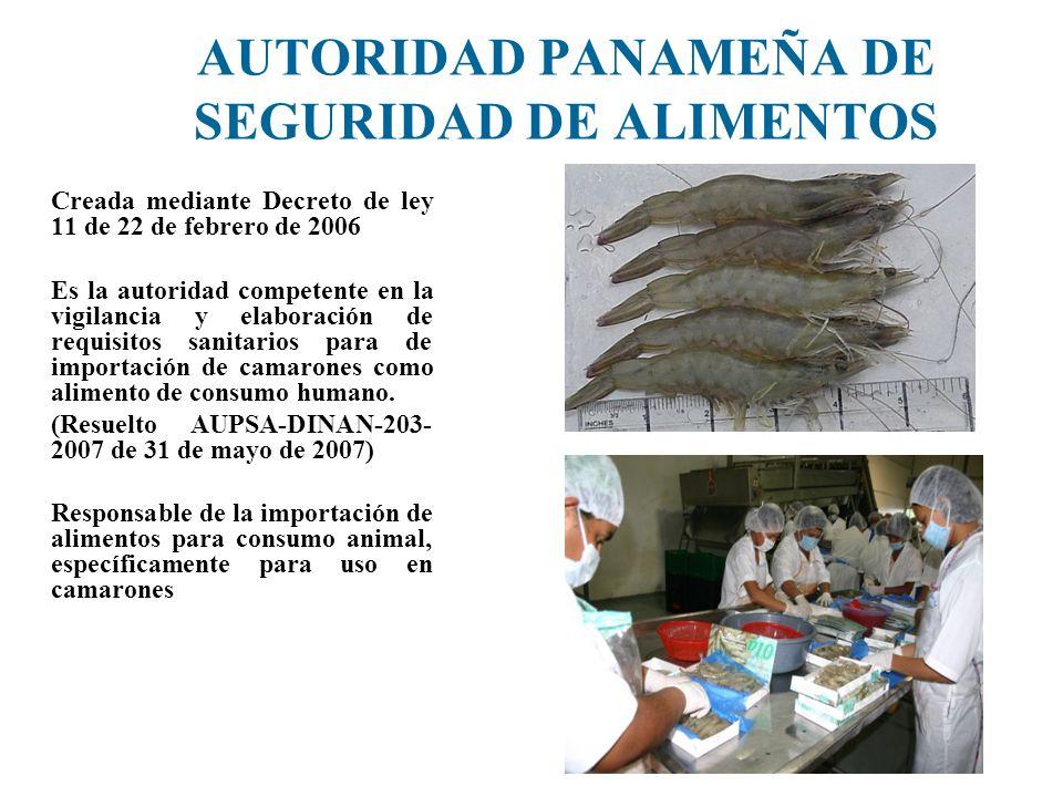 AUTORIDAD PANAMEÑA DE SEGURIDAD DE ALIMENTOS Creada mediante Decreto de ley 11 de 22 de febrero de 2006 Es la autoridad competente en la vigilancia y