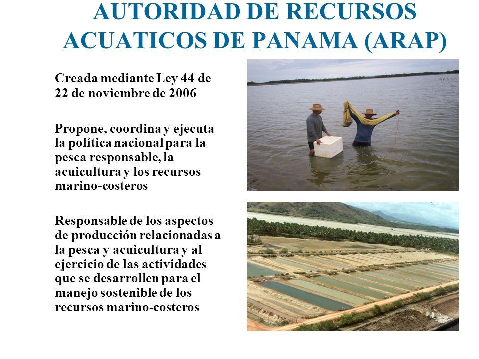 AUTORIDAD DE RECURSOS ACUATICOS DE PANAMA (ARAP) Creada mediante Ley 44 de 22 de noviembre de 2006 Propone, coordina y ejecuta la política nacional pa