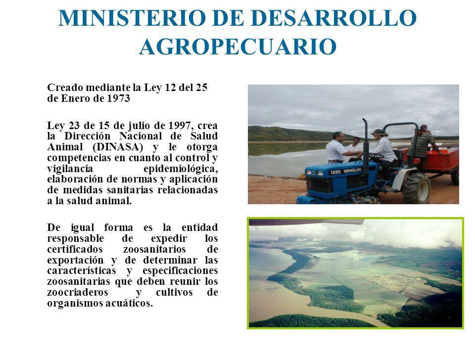 MINISTERIO DE DESARROLLO AGROPECUARIO Creado mediante la Ley 12 del 25 de Enero de 1973 Ley 23 de 15 de julio de 1997, crea la Dirección Nacional de S