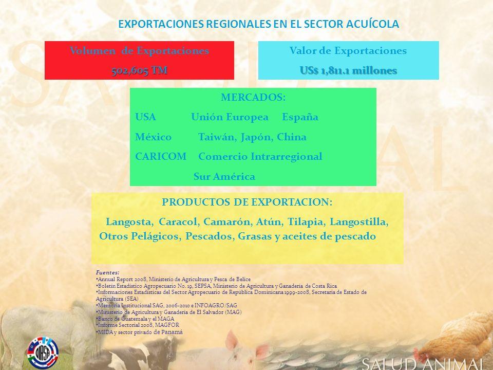 Volumen de Exportaciones 502,605 TM Valor de Exportaciones US$ 1,811.1 millones MERCADOS: USA Unión Europea España México Taiwán, Japón, China CARICOM