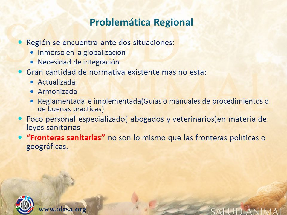 Problemática Regional Región se encuentra ante dos situaciones: Inmerso en la globalización Necesidad de integración Gran cantidad de normativa existe