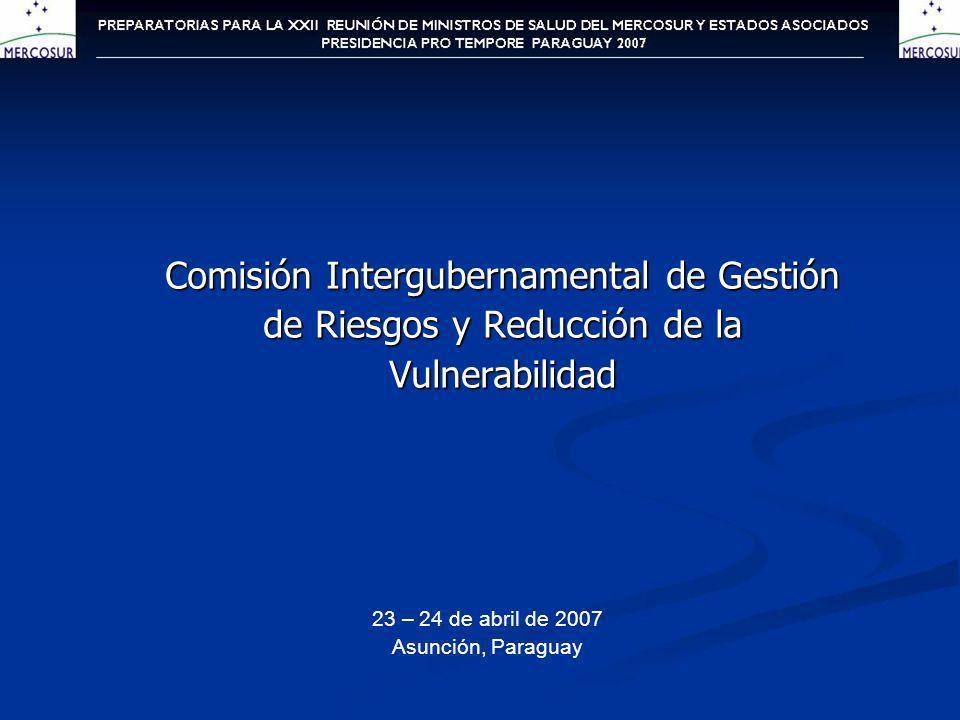Comisión Intergubernamental de Gestión de Riesgos y Reducción de la Vulnerabilidad 23 – 24 de abril de 2007 Asunción, Paraguay