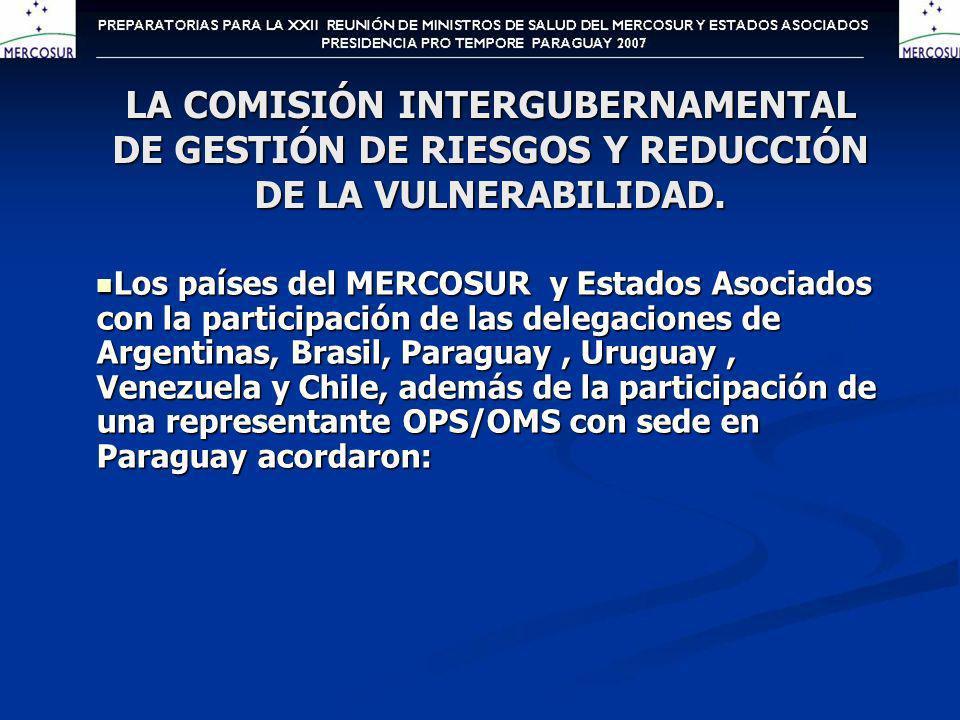 LA COMISIÓN INTERGUBERNAMENTAL DE GESTIÓN DE RIESGOS Y REDUCCIÓN DE LA VULNERABILIDAD.