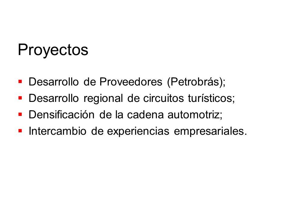 Proyectos Desarrollo de Proveedores (Petrobrás); Desarrollo regional de circuitos turísticos; Densificación de la cadena automotriz; Intercambio de ex