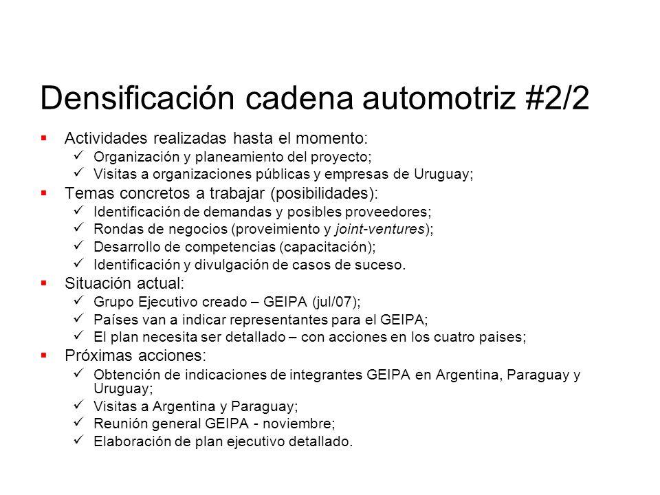 Densificación cadena automotriz #2/2 Actividades realizadas hasta el momento: Organización y planeamiento del proyecto; Visitas a organizaciones públi