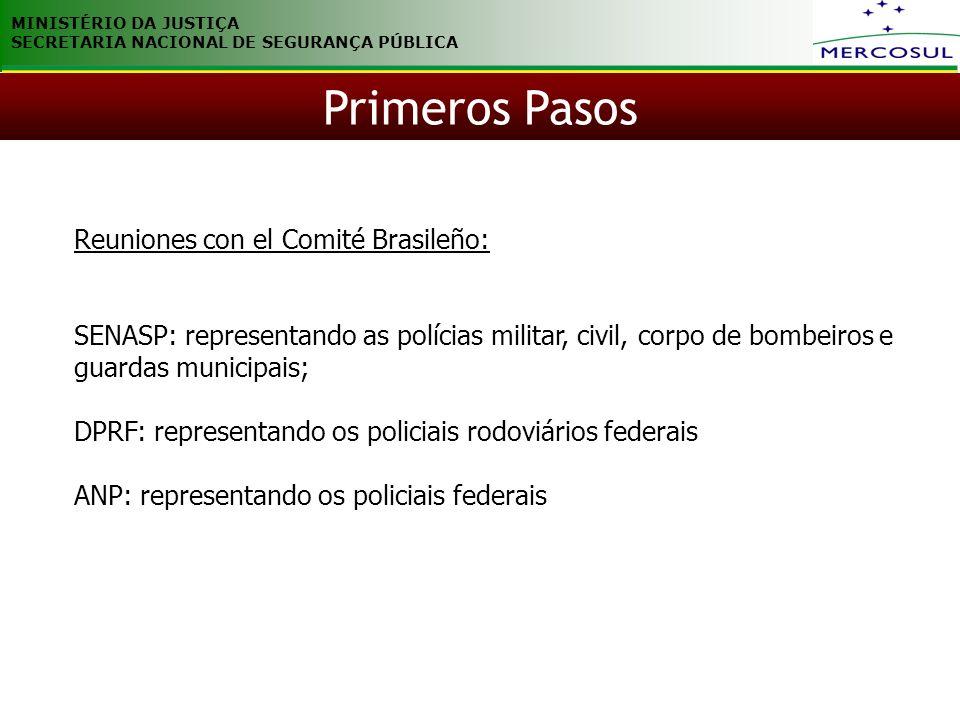 MINISTÉRIO DA JUSTIÇA SECRETARIA NACIONAL DE SEGURANÇA PÚBLICA Reuniones con el Comité Brasileño: SENASP: representando as polícias militar, civil, co