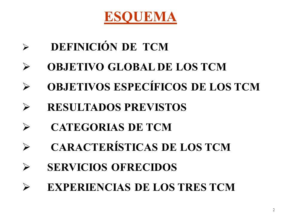 1 LOS TELECENTROS COMUNITARIOS MULTISERVICIOS (TCM) EN MADAGASCAR