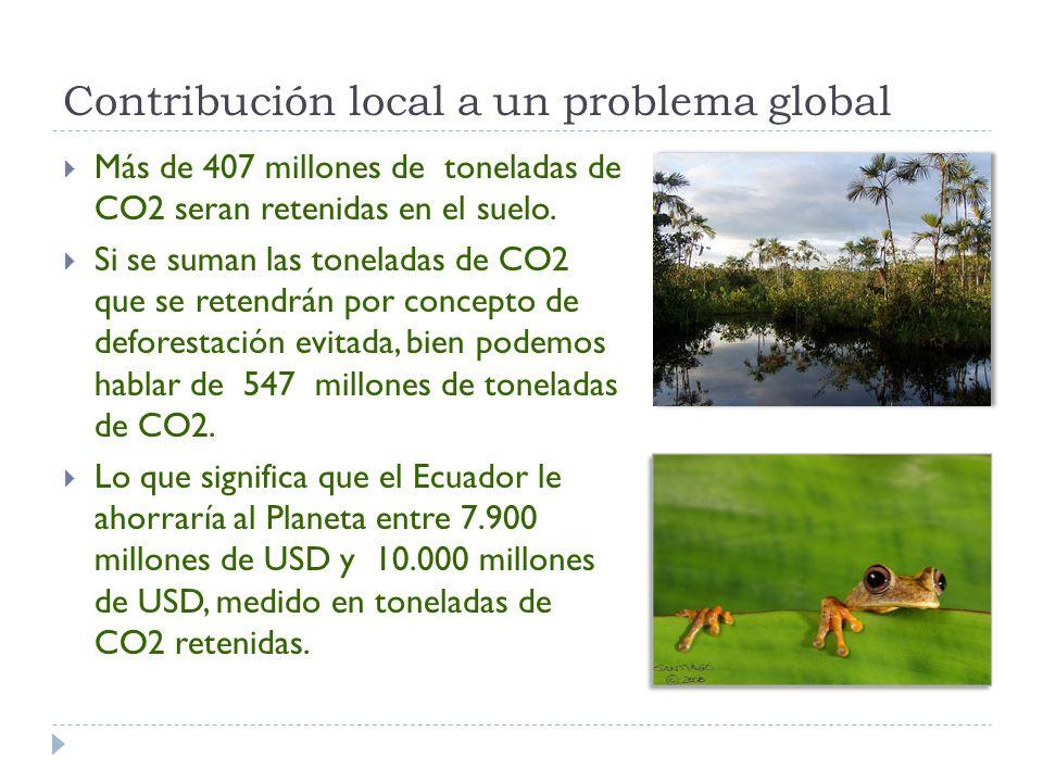 Contribución local a un problema global Más de 407 millones de toneladas de CO2 seran retenidas en el suelo.